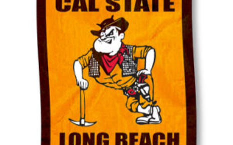 cal_state_long_beach_49ers_house_flag_60913big.jpg